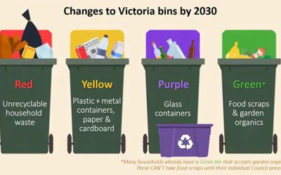 What's allowed in your Banyule yellow recycling bin… and other bin news