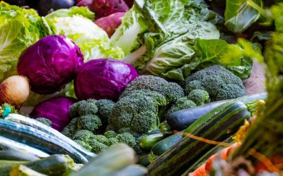 The role of urban agriculture in a Banyule food strategy
