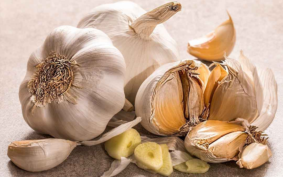 garlic on a table with cloves spilling out