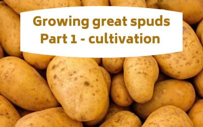 Growing great spuds part 1 – cultivation