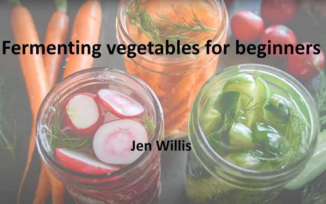 Fermenting vegetables for beginners